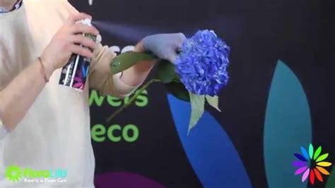 Sprei No 1 Aqua floralife 174 aqua color spray how to flowers