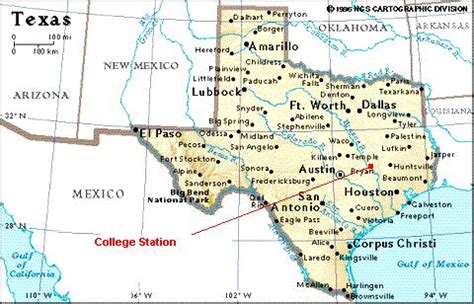 south texas college map cmpb back from texas again the petrified wood of texas