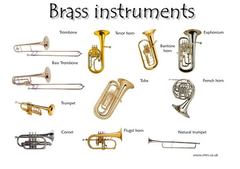brass section instruments brass clipart instrument the orchestra pencil and in