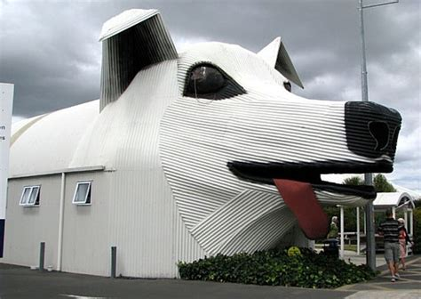 dog shaped house animal houses been seen