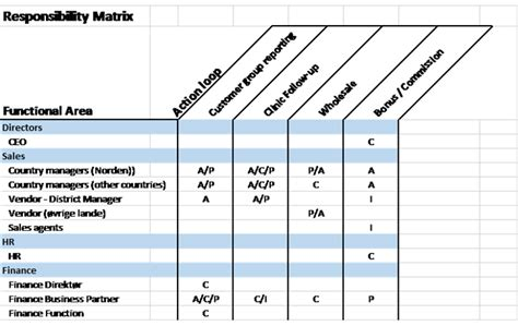 establishing your company s responisbility matrix for bi