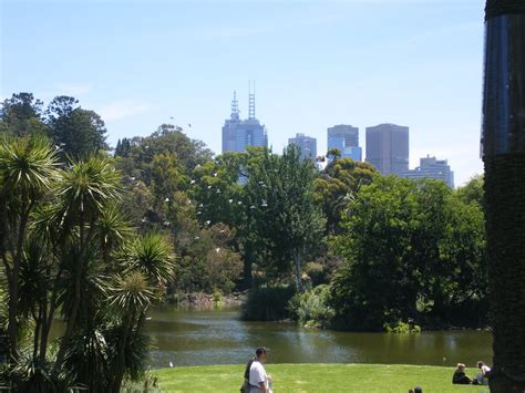 Royal Botanical Garden Melbourne Panoramio Photo Of Royal Botanical Garden Melbourne