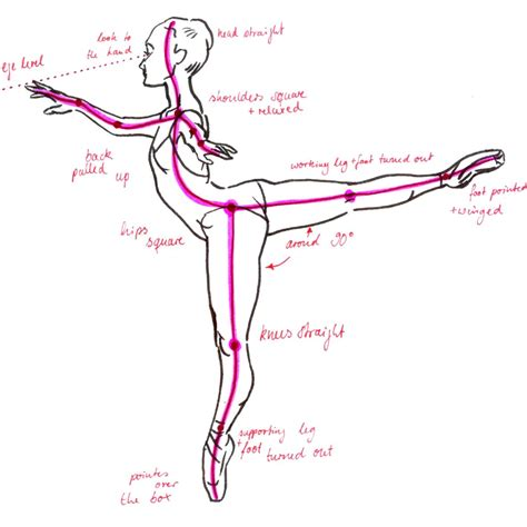 on pointe s guide to taking on the world books esercizi per migliorare l arabesque ecole de ballet