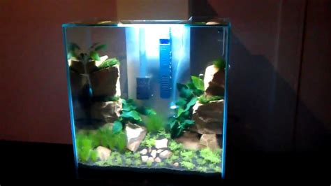 fluval edge 2 beleuchtung new fluval edge 2 46 liter just planted part 3 quot