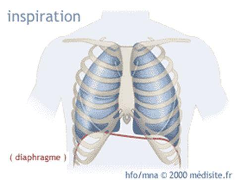 dolore gabbia toracica respirazione addominale