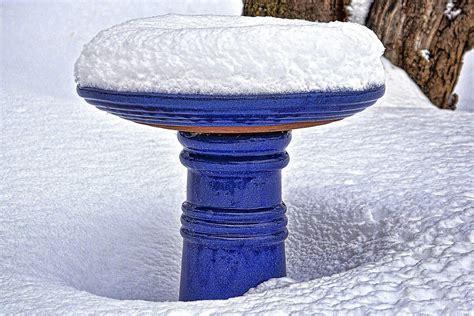 winterize your bird bath winter bird baths