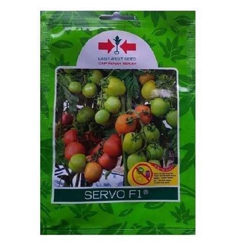 Benih Benih Tomat F1 Paket Tanaman Buah Sayuran Mini Garden jual benih tomat servo f1 1 750 biji panah merah bibit