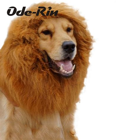 golden retriever wig golden retriever arten golden retriever arten preis auf wigs vergleichen