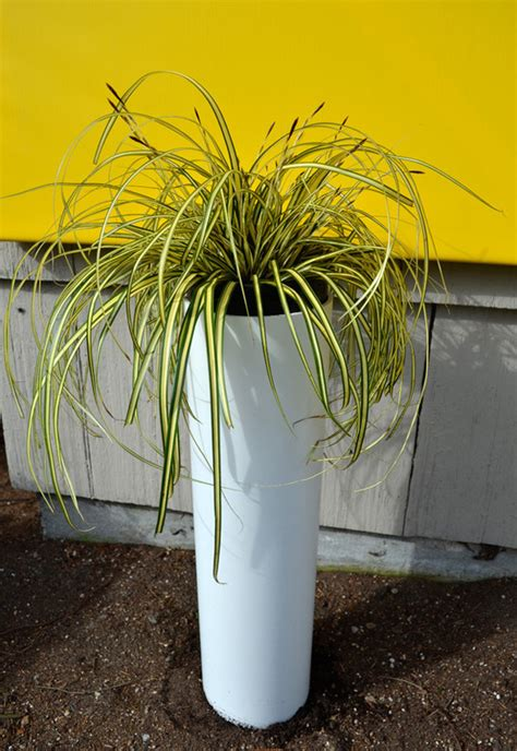 Diy Modern Planter by A How To Make A Diy Modern Pillar