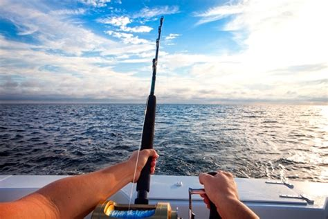fishing charter boat fort pierce port st lucie fort pierce fishing charters eco tours