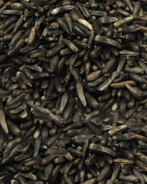nyjer thistle seed products fm browns