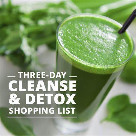 Http Skinnyms 3 Day Soup Detox by Best 25 Three Day Cleanse Ideas On Detox