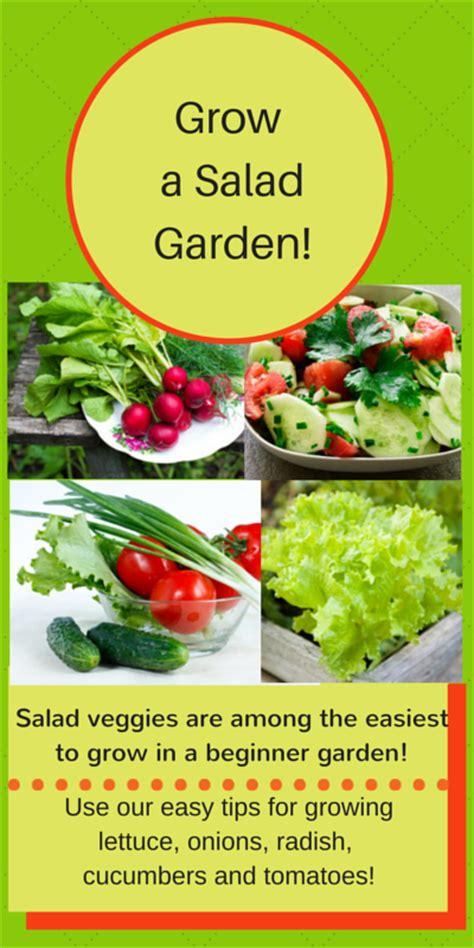 beginner vegetable garden layout beginner vegetable garden free plans pictures and worksheets