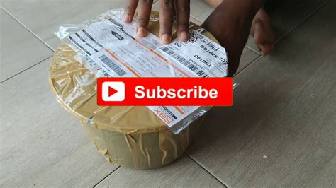 ikan guppy  sampai youtube