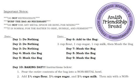 printable directions for amish friendship bread amish friendship bread printable instructions
