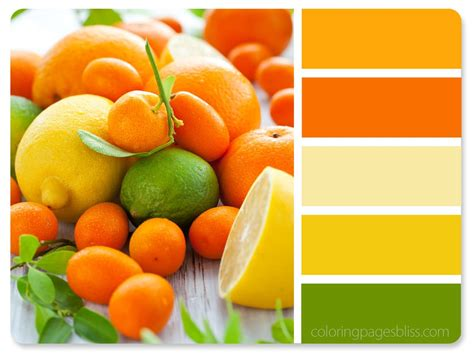 food color combinations nature inspired color palettes