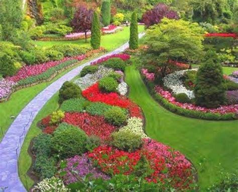 piante fiori da giardino piante da giardino piante da giardino le principali