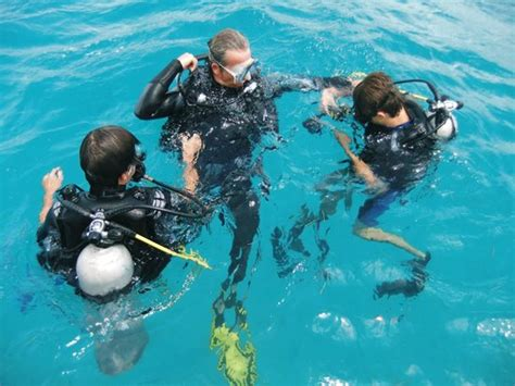 Delaware Background Check Center Safety Checks Photo De Octopus Diving Center 206 Le De Praslin Tripadvisor