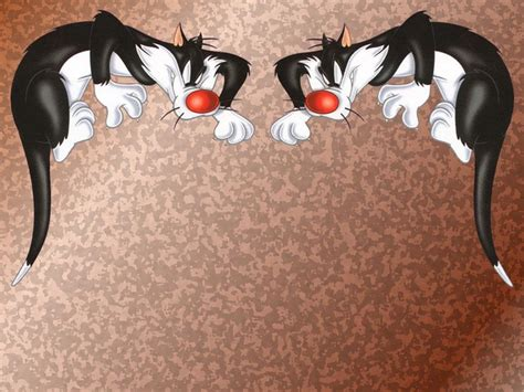 wallpaper sylvester the cat sylvester the cat wallpapers wallpaper cave
