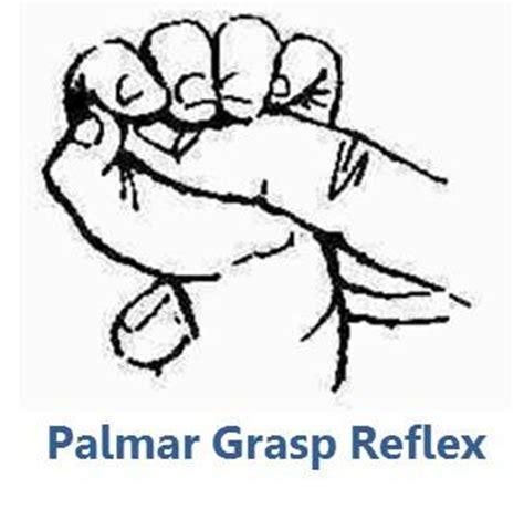 Planter Grasp by Palmar Grasp Reflex Flickr Photo