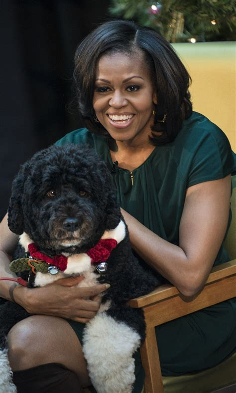 obama bo obama bo obama take adorable instagram selfie photo huffpost