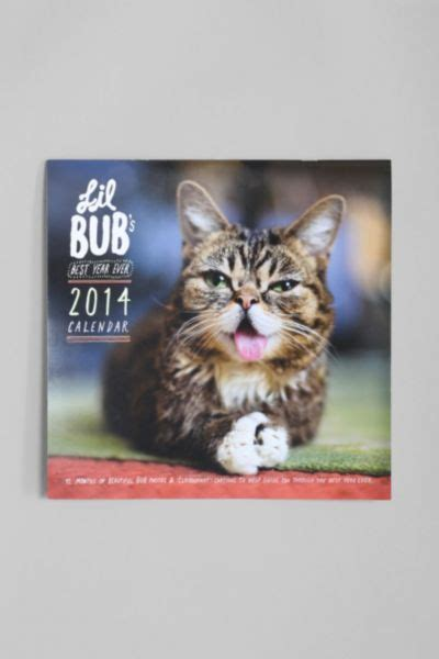 Lil Bub Calendar Cat Desk Accessories Popsugar Career Cat Desk Accessories