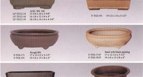 vasi per bonsai come creare un bonsai attrezzi e vasi per bonsai