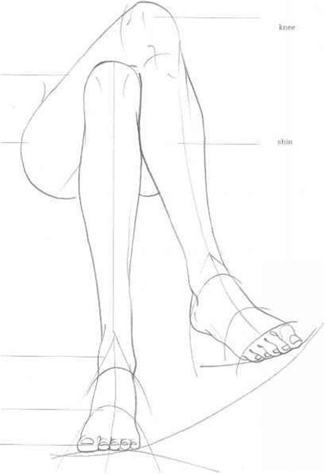 Drawing Legs by Pin By Julien Pietri On How To Draw