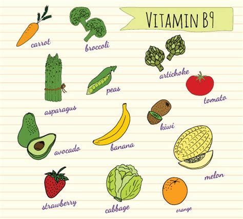 vitamin b complex foods list diet sources of folate for pregnancy coachinggala