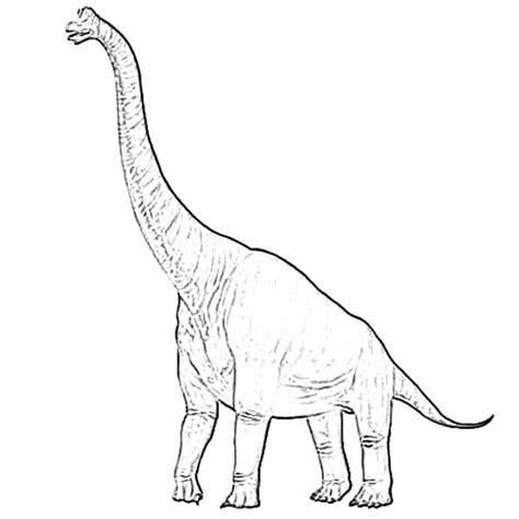 Diplodocus Netart Diplodocus Coloring Page