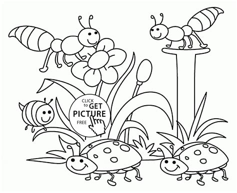 Coloring Pages Spring Nature | pics for gt printable colouring pages nature
