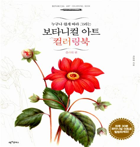 beginner s guide to botanical flower painting books botanical coloring book vol 1 flower colouring book for