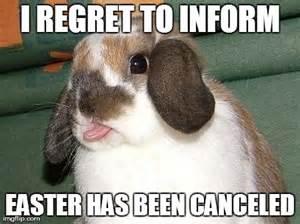 Easter Bunny Meme - trending funny bunny memes