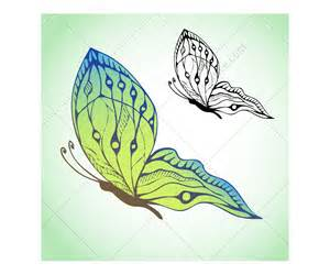 butterfly vector pack butterfly vectors hand drawn