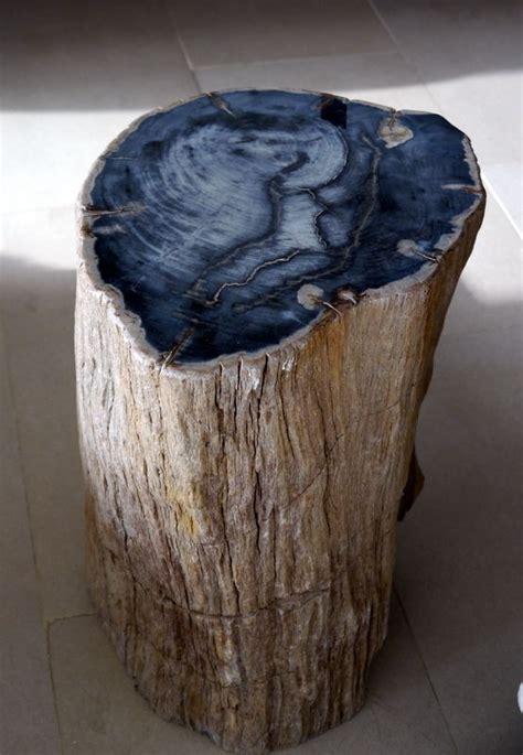 petrified wood table furniture pinterest log