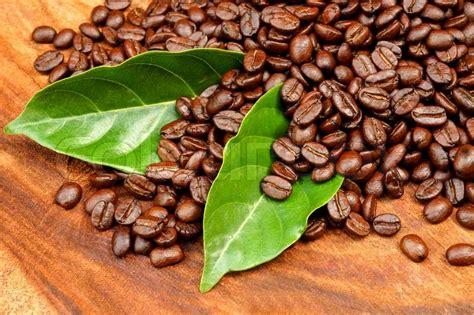 Arabica Toraja Coffee Roasted Beans roasted coffee beans on wood arabica coffee stock photo colourbox