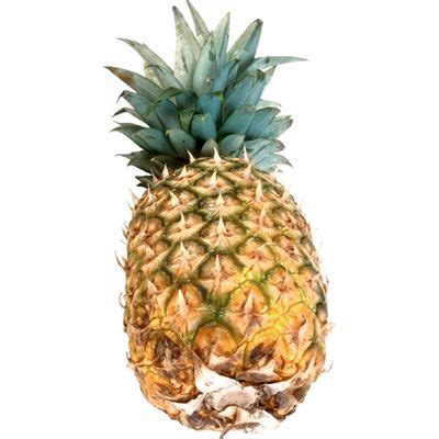 pineapple meaning of pineapple in longman dictionary of