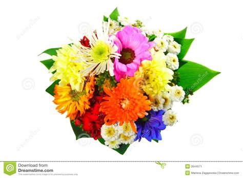 Tiff Bloom Bouquet By Velcris One flowers bouquet stock image image 2644571