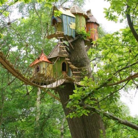 coolest tree houses best tree house ever outside is heaven pinterest