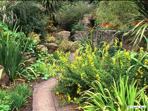 Bog Garden by Buried Treasure The Pulham Legacy