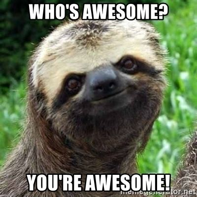 whose awesome you re awesome who s awesome you re awesome sarcastic sloth meme