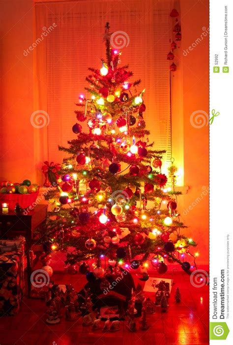 holiday christmas tree stock photography image 52992