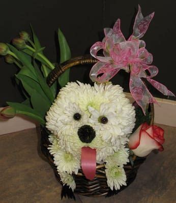 puppy flower arrangement all flower arrangement yelp