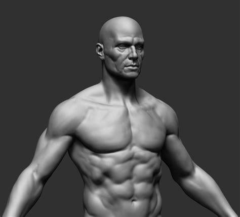 3d model human anatomy 3d model obj ztl cgtrader