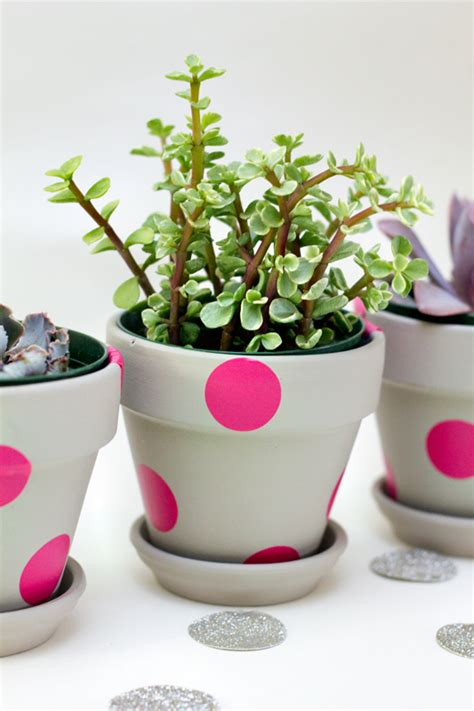Pink Polka Dot Wall Stickers easy neon painted terracota pots sarah hearts