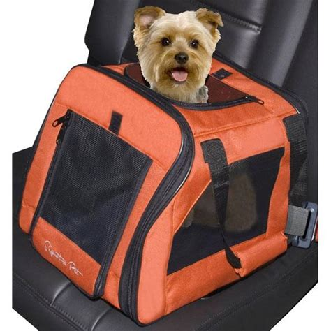 comfort pets law nj click it or ticket law applies to pets too baxterboo