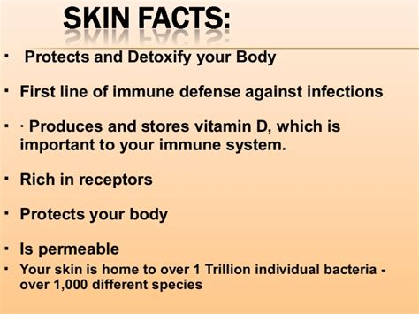 immune how your defends and protects you bloomsbury sigma books skin health part 2 wound healing