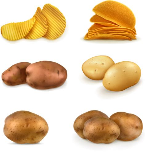 Potato Free by Potatoes And Potato Chips Vector Graphics Vector Food
