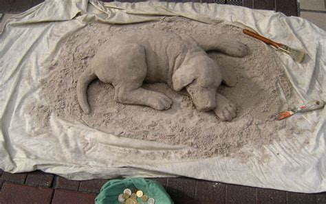 sand puppy sand puppy by angie o on deviantart