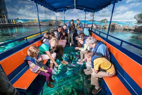 glass bottom boat experience glass bottom boat tours ripley s aquarium of the smokies